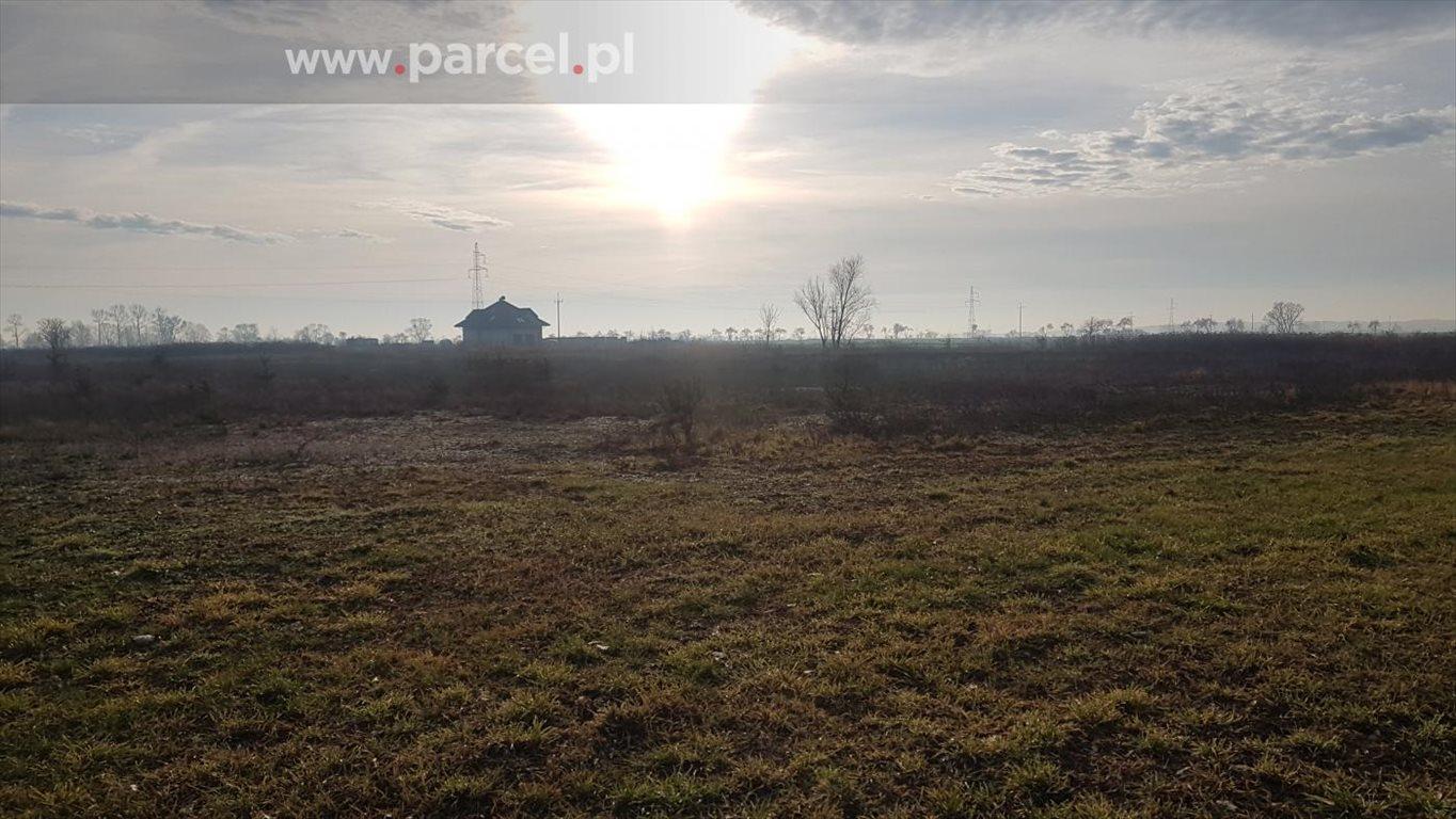 Działka budowlana na sprzedaż Zalasewo, Zalasewo, Piesza  3021m2 Foto 4