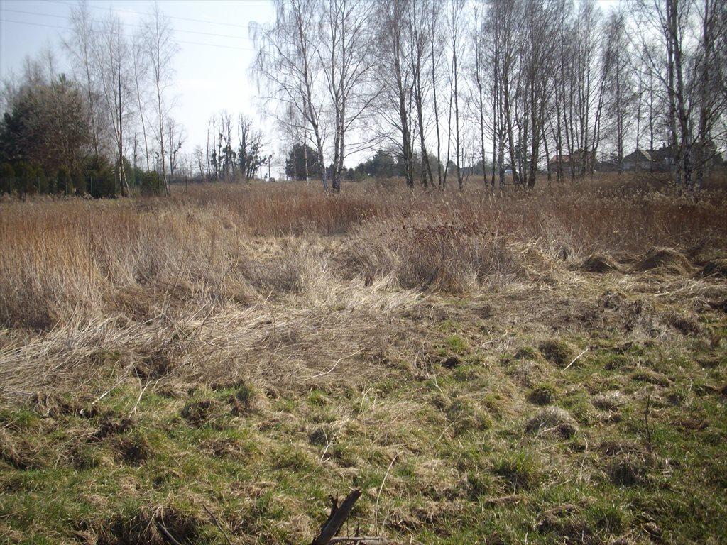 Działka budowlana na sprzedaż Mrozów, Działka mieszkaniowo - usługowa  5800m2 Foto 3