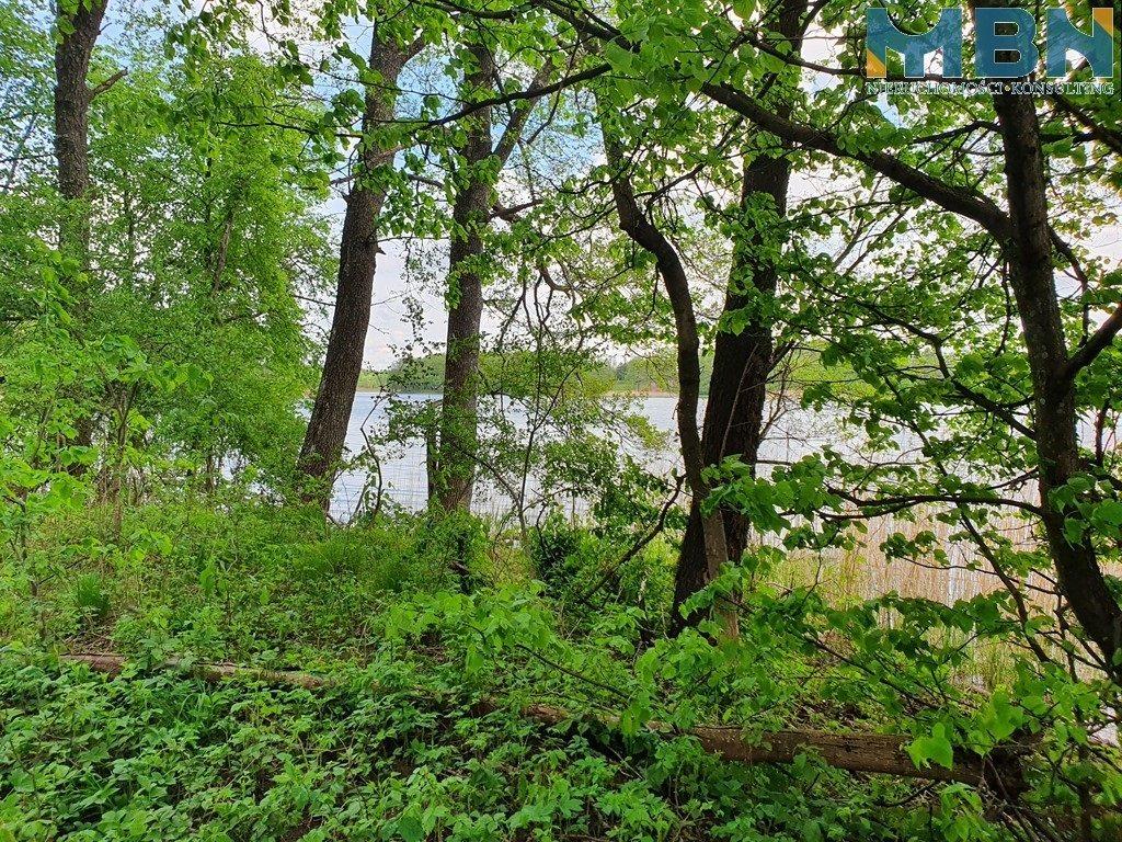 Działka budowlana na sprzedaż Wyszowate, Wyszowate  16813m2 Foto 4