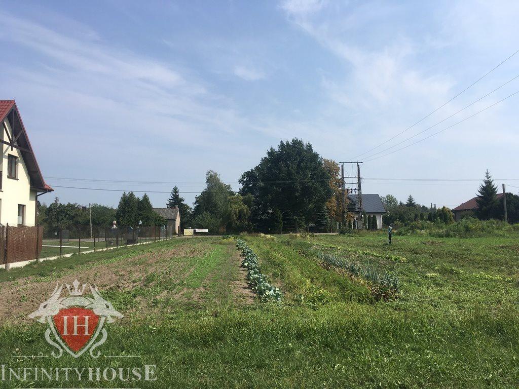Działka rolna na sprzedaż Wólka Grodziska  4921m2 Foto 2