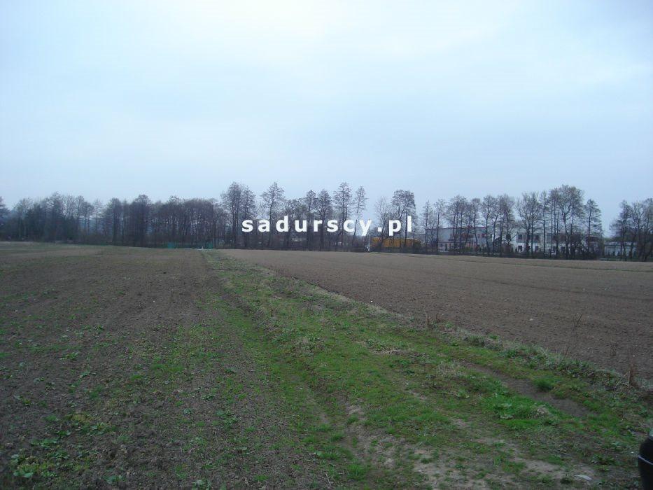 Działka inwestycyjna na sprzedaż Morawica  10000m2 Foto 8