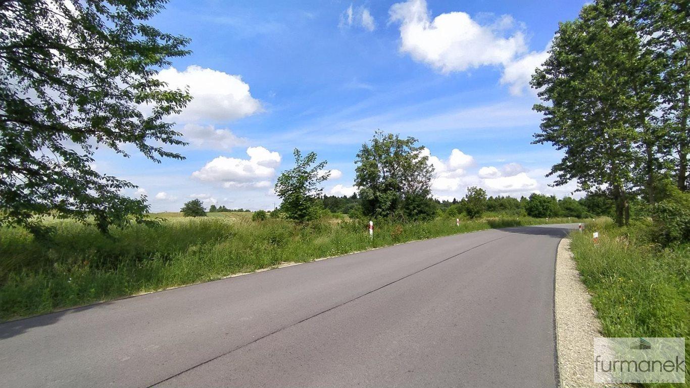 Działka rolna na sprzedaż Stanisławów  16962m2 Foto 3