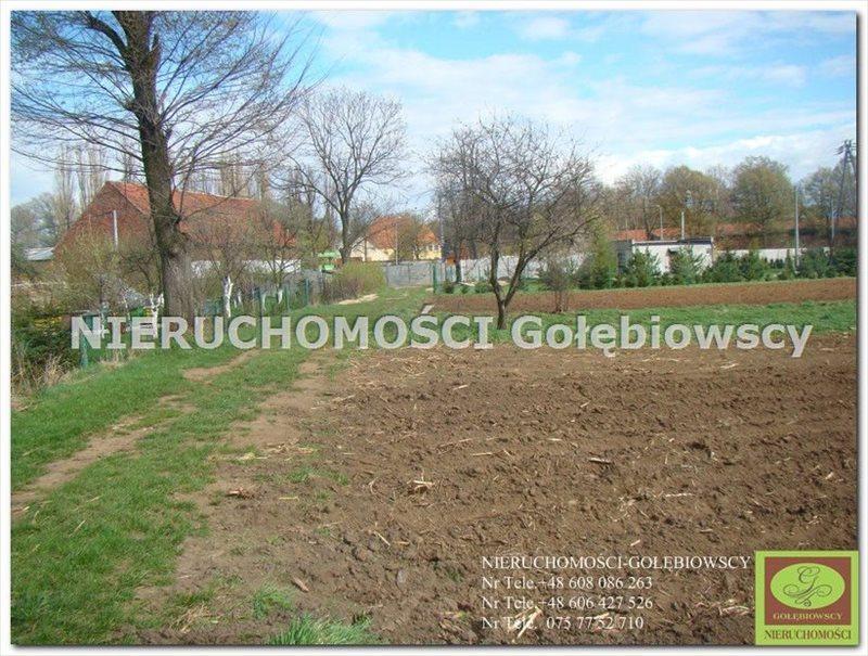 Działka inna na sprzedaż Lasów  4005m2 Foto 3