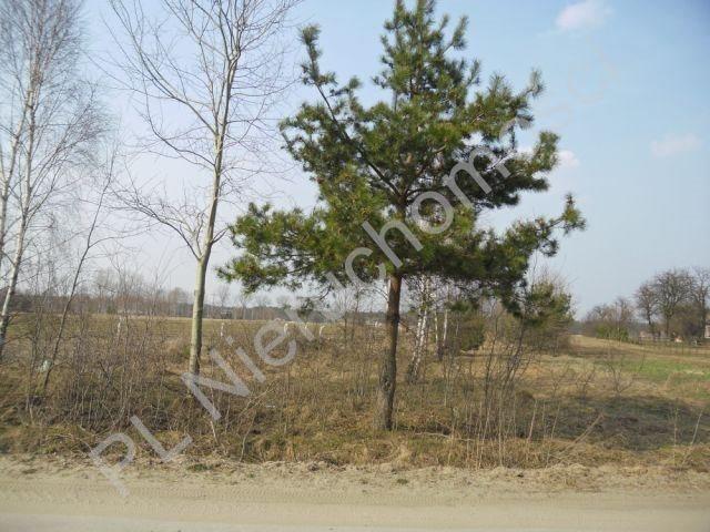 Działka rolna na sprzedaż Stanisławów  7200m2 Foto 3