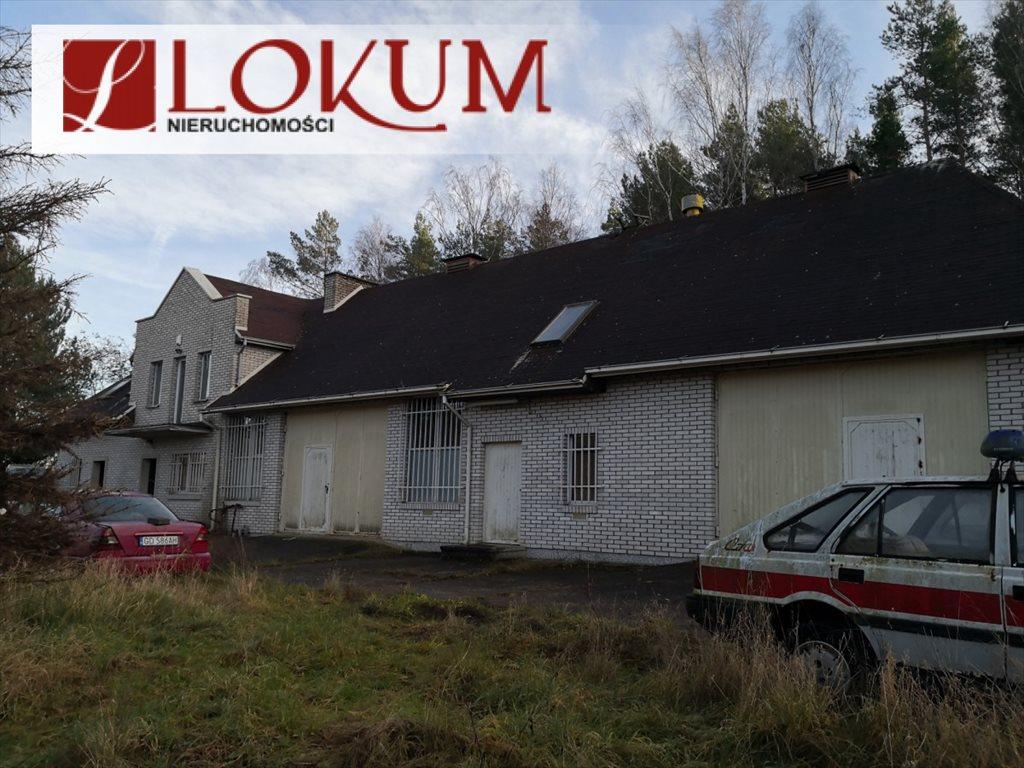 Lokal użytkowy na sprzedaż Czapielsk, Tamaryszkowa  315m2 Foto 1