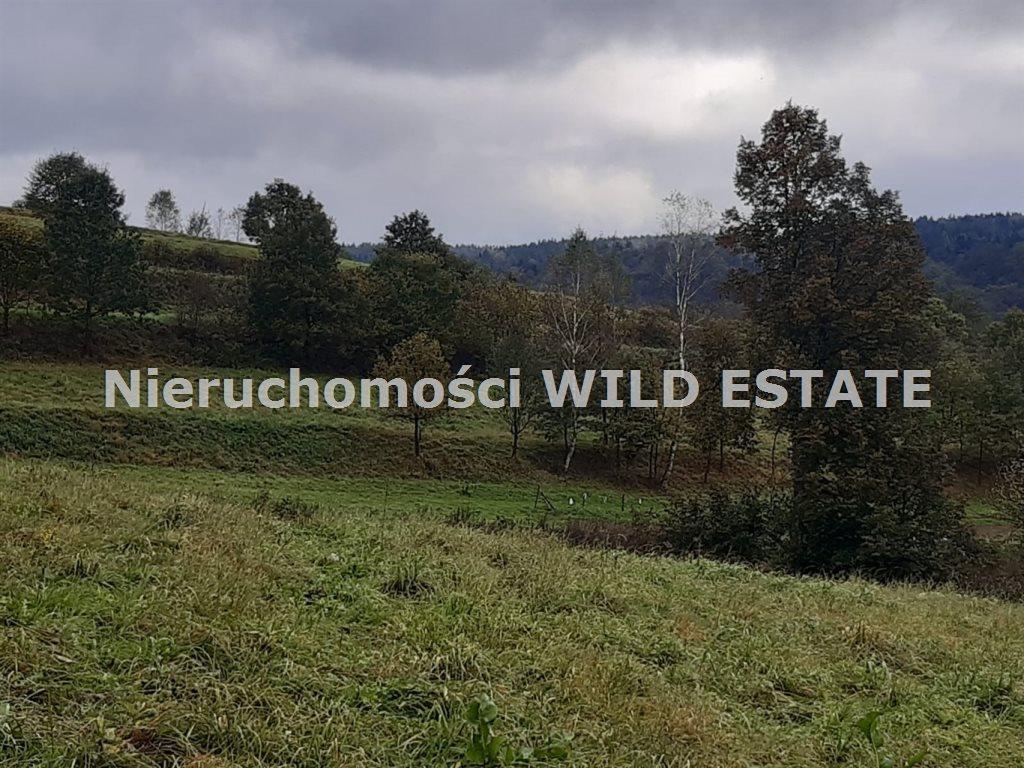 Działka rolna na sprzedaż Olszanica, Olszanica  4017m2 Foto 6