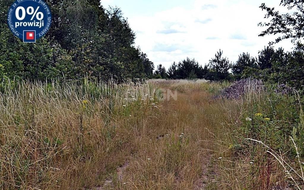 Działka budowlana na sprzedaż Bolesławice, Bolesławice  1137m2 Foto 5