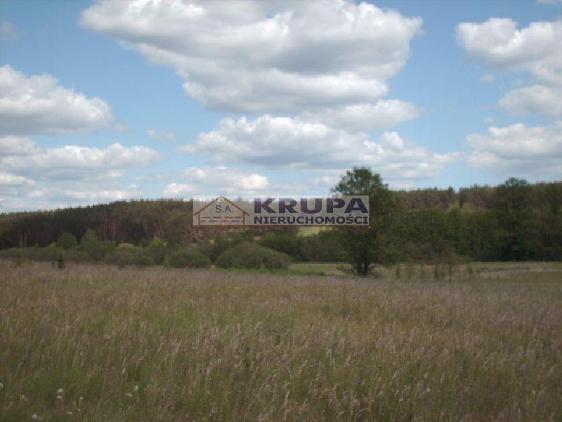 Działka rolna na sprzedaż Purda  3200m2 Foto 2