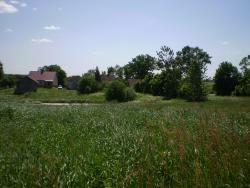 Działka siedliskowa na sprzedaż Plewki  11800m2 Foto 2