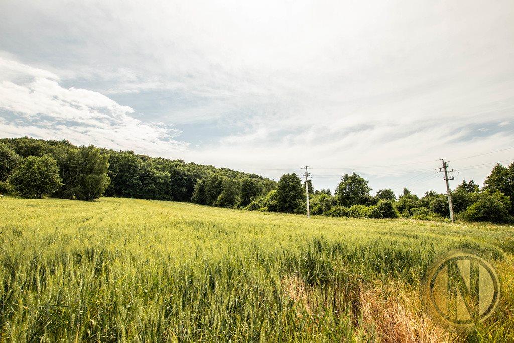 Działka rolna na sprzedaż Kraków, Wola Justowska, Wola Justowska  3396m2 Foto 8