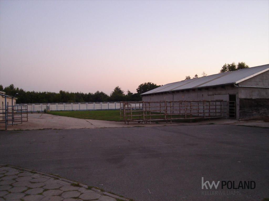Lokal użytkowy na sprzedaż Łęka Opatowska  1010m2 Foto 5