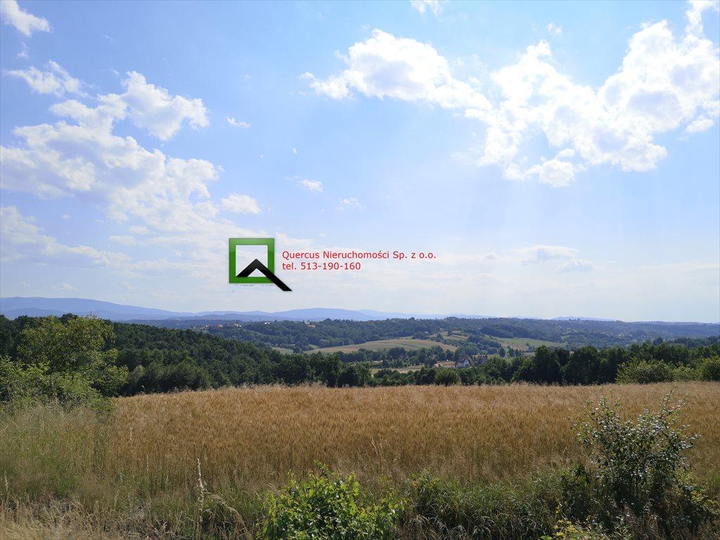Działka budowlana na sprzedaż Dziekanowice  2900m2 Foto 3