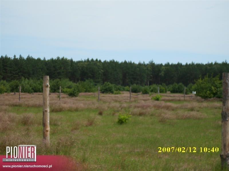Działka rolna na sprzedaż Rurzyca  1368m2 Foto 4