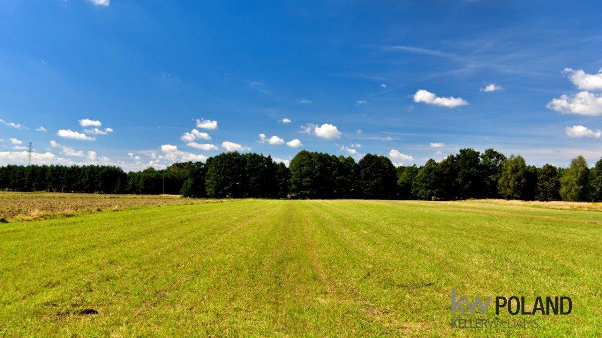 Działka rolna na sprzedaż Gostyń, Tęczowa  14000m2 Foto 3