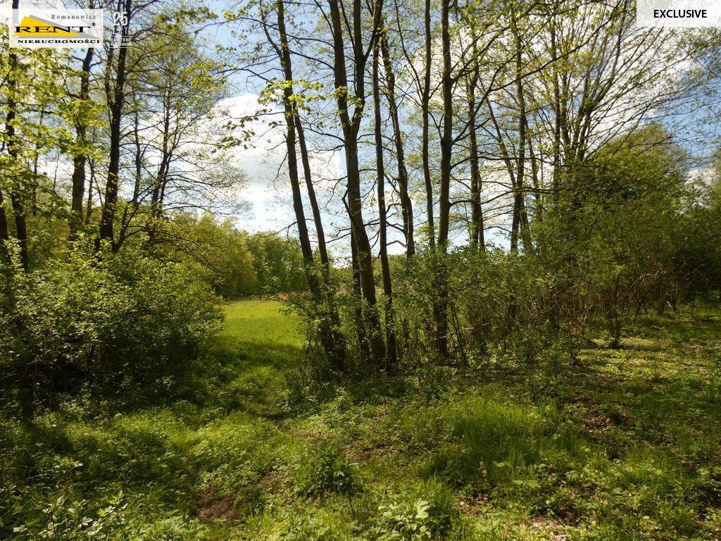 Działka siedliskowa na sprzedaż Błotno  18300m2 Foto 5