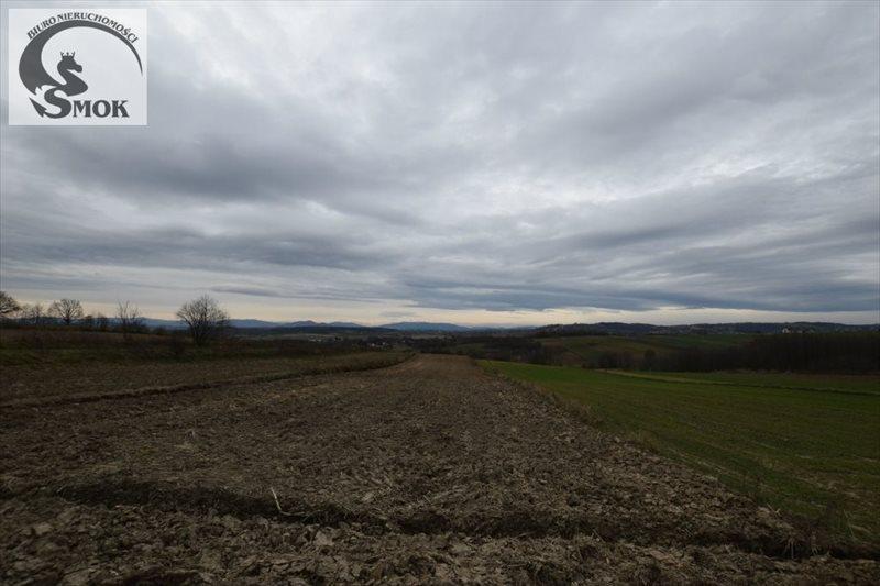 Działka rolna na sprzedaż Zborczyce  3000m2 Foto 1