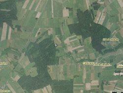 Działka siedliskowa na sprzedaż Świdry-Dobrzyce  6400m2 Foto 8