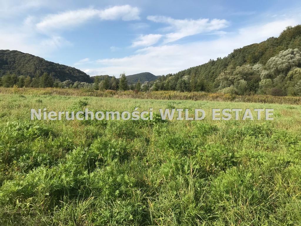 Działka rolna na sprzedaż Trepcza  5800m2 Foto 8