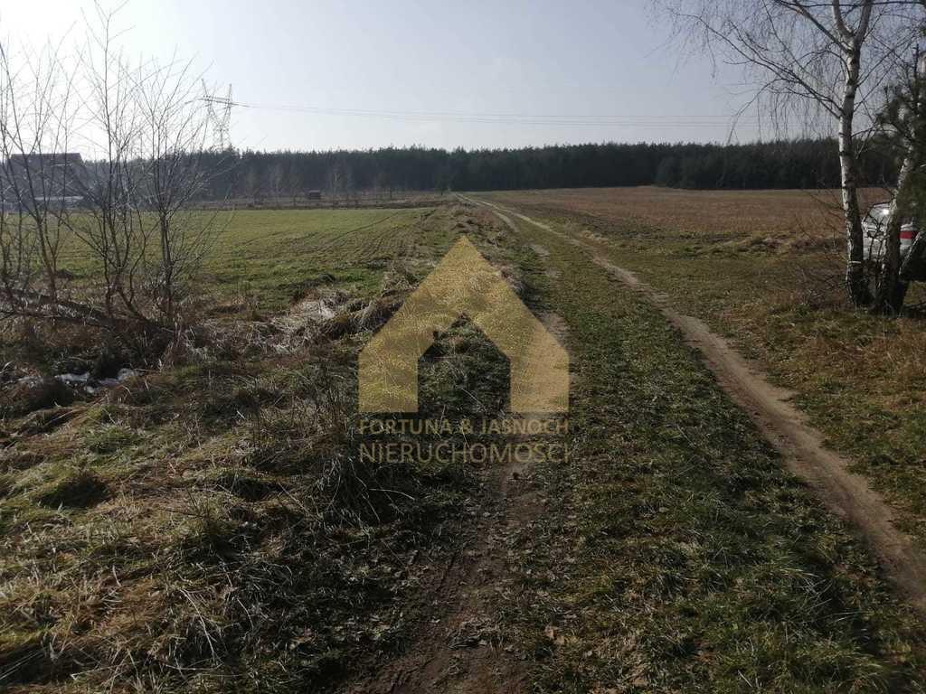 Działka rolna na sprzedaż Żyrowa  17020m2 Foto 6