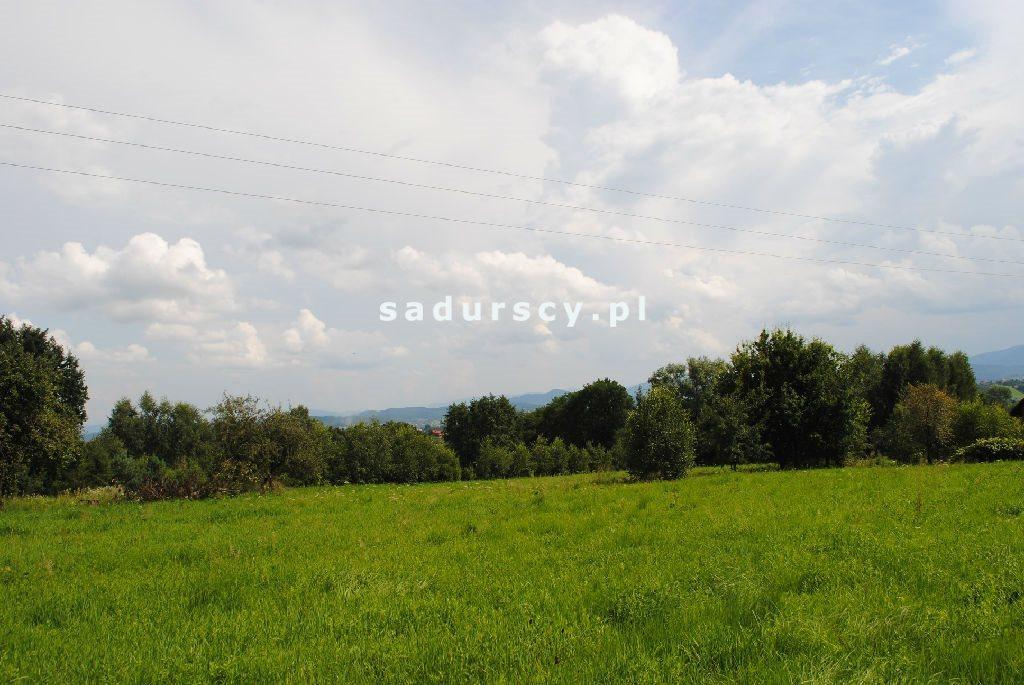 Działka leśna na sprzedaż Aleksandrów  50000m2 Foto 2