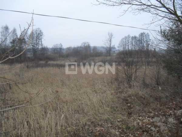 Działka inwestycyjna na sprzedaż Jerzmanowa, Głogowska  16647m2 Foto 3