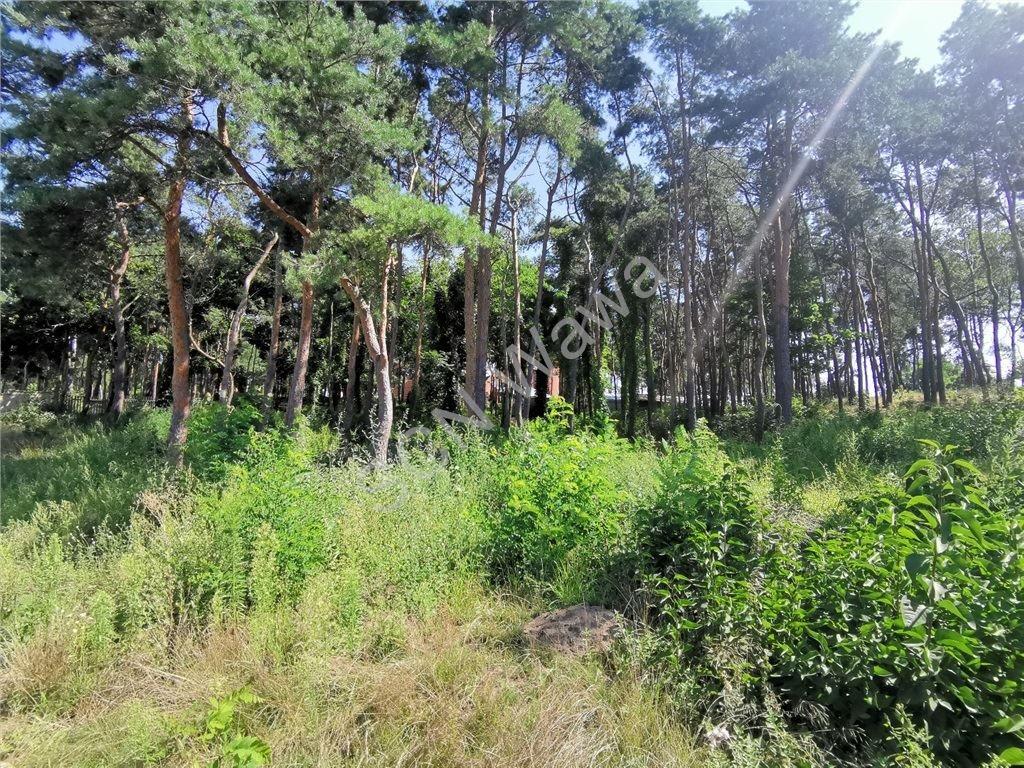 Działka leśna na sprzedaż Legionowo  1808m2 Foto 5