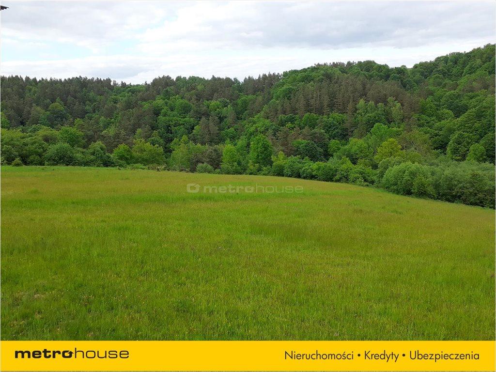 Działka rolna na sprzedaż Średnia Wieś, Lesko  12600m2 Foto 2