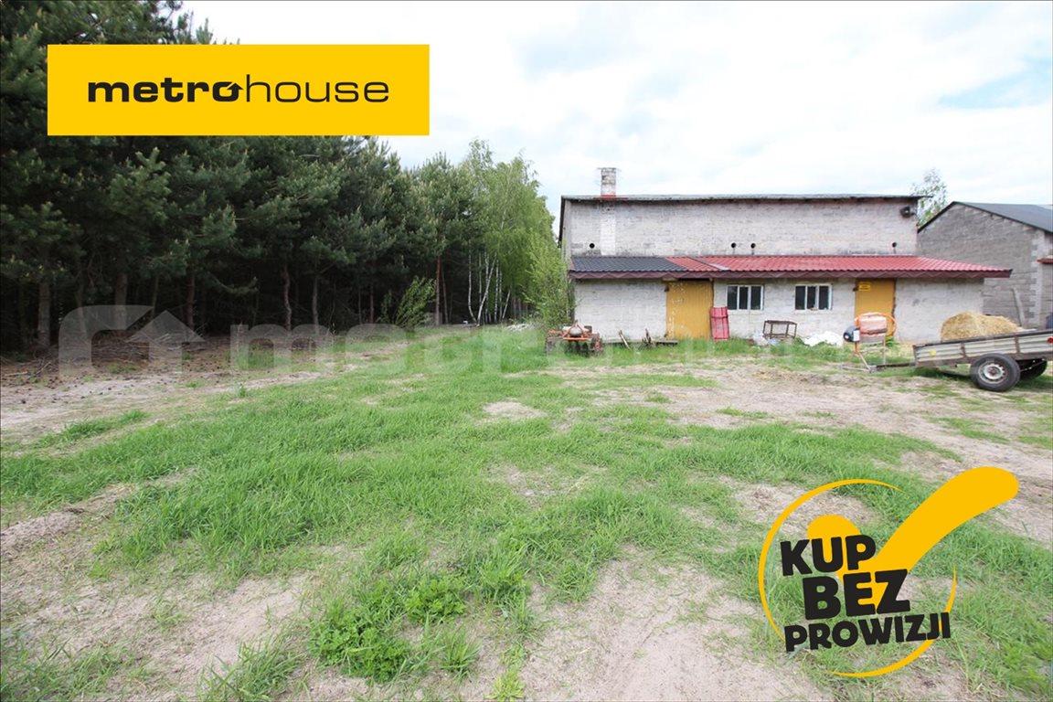 Działka rolna na sprzedaż Feliksów, Poddębice  7000m2 Foto 1