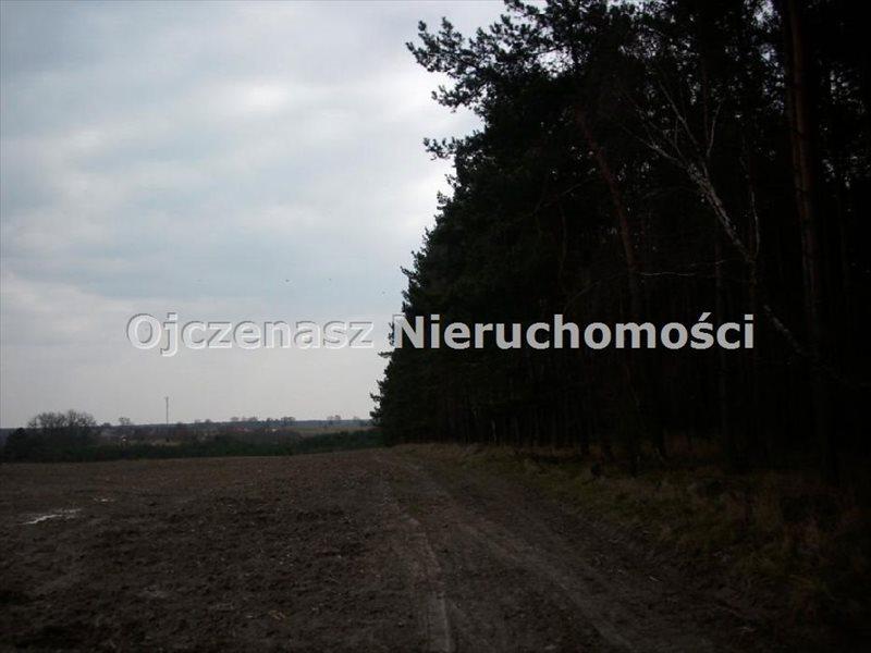Działka inwestycyjna na sprzedaż Lubiewo  100000m2 Foto 3