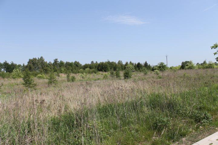 Działka rolna na sprzedaż Łódź, Widzew, Stare Moskule, Opolska  14997m2 Foto 13