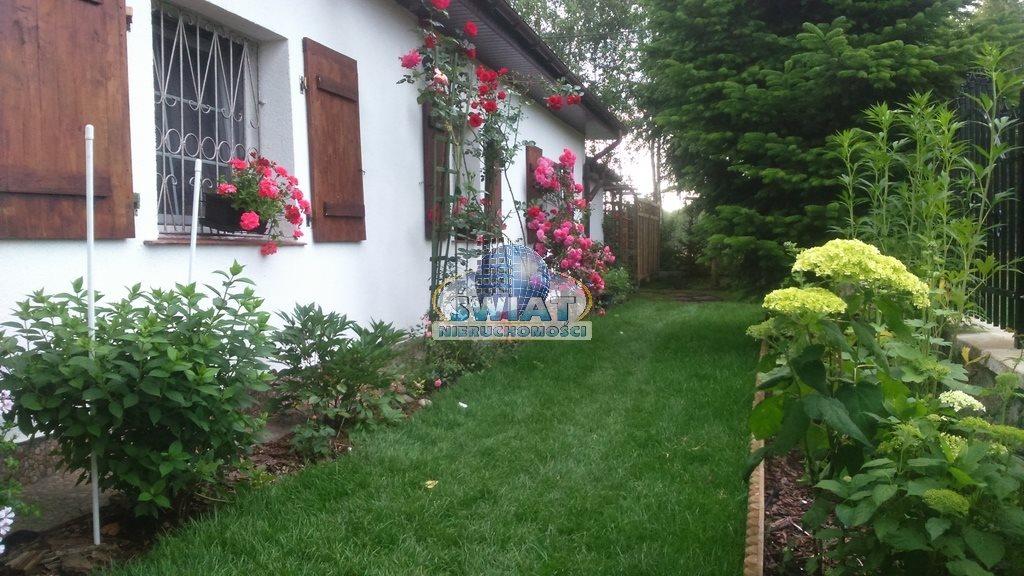 Dom na sprzedaż Dobrojewo  135m2 Foto 7