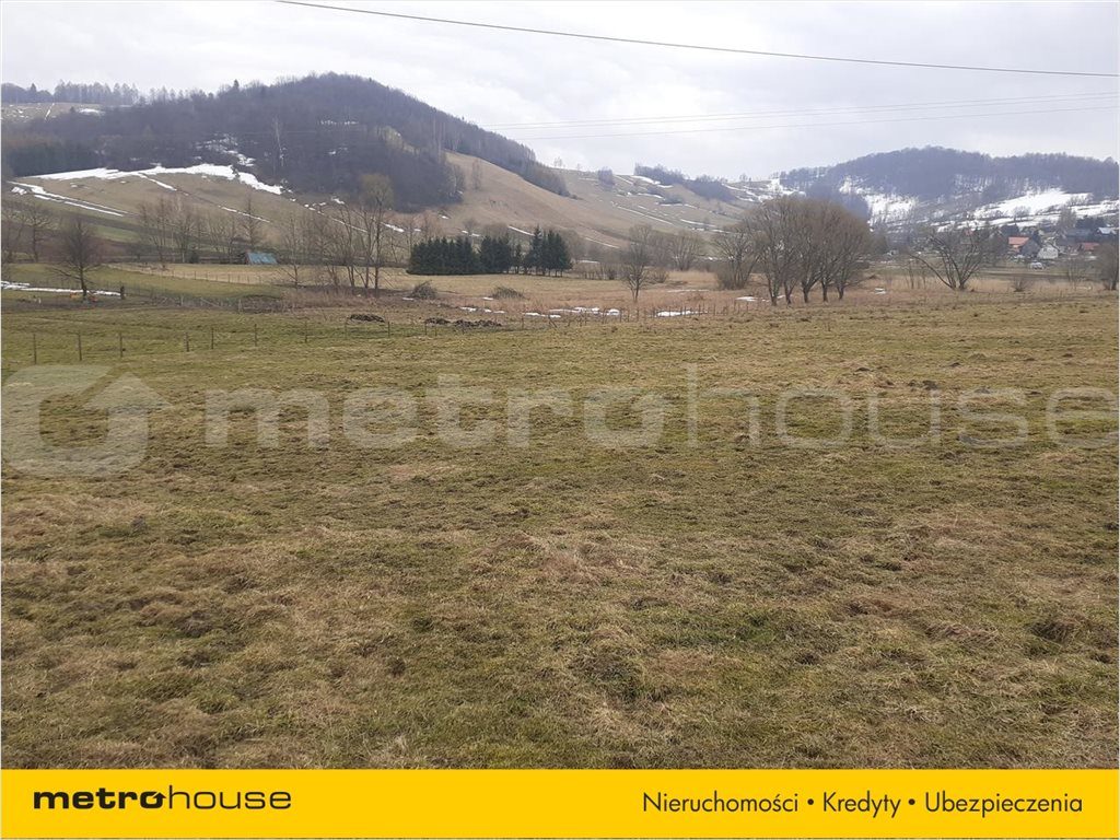 Działka rolna na sprzedaż Terka, Solina  7800m2 Foto 2