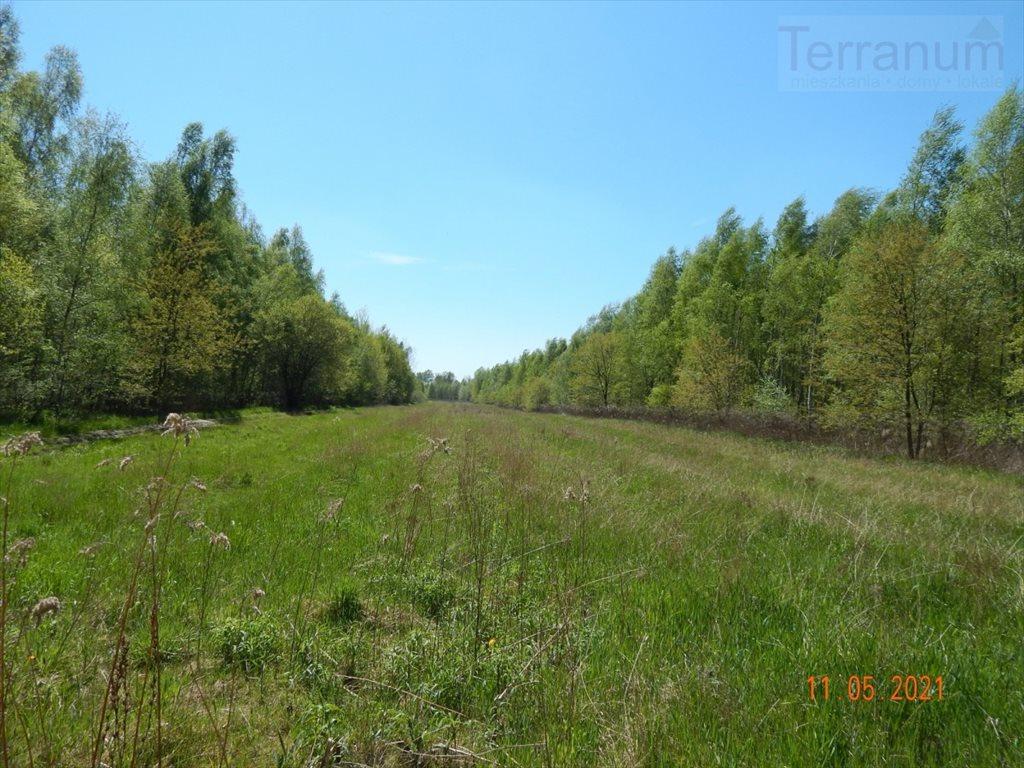 Działka rolna na sprzedaż Konstancin-Jeziorna, Kołobrzeska  12253m2 Foto 1