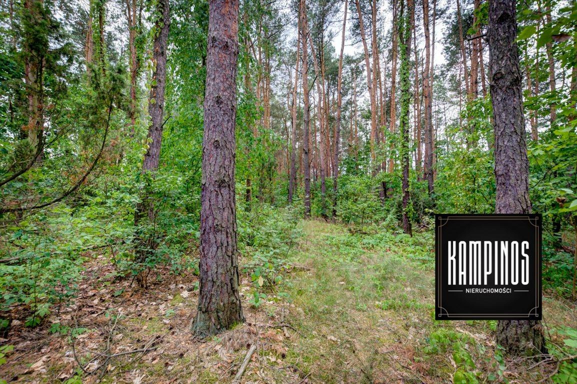 Działka budowlana na sprzedaż Truskaw, Izabelin, oferta 2792  3689m2 Foto 4