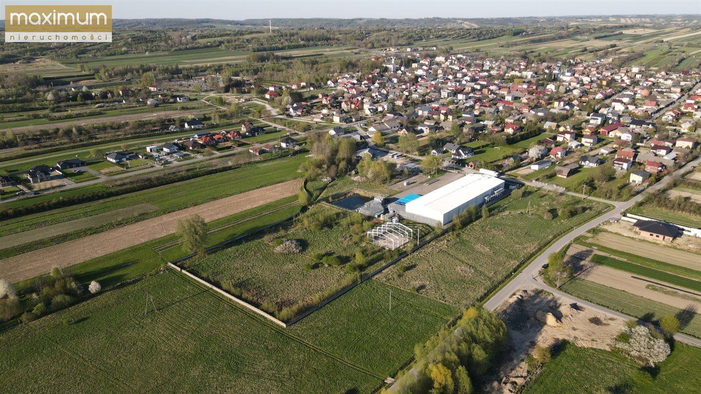 Działka budowlana na sprzedaż Frampol  10000m2 Foto 1