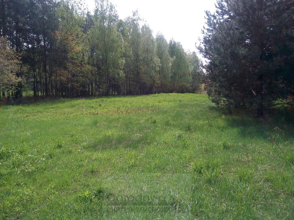 Działka rolna na sprzedaż Nasielsk  4573m2 Foto 4