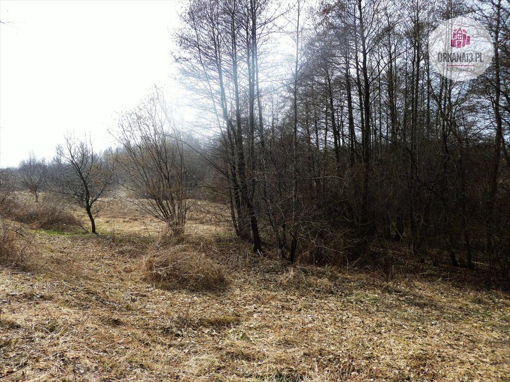 Działka rolna na sprzedaż Radostowo, Radostowo  108251m2 Foto 4