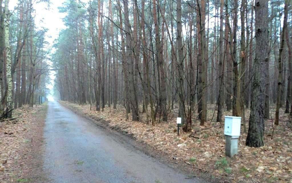 Działka budowlana na sprzedaż Grodzisk Mazowiecki, Grzymek  2000m2 Foto 3