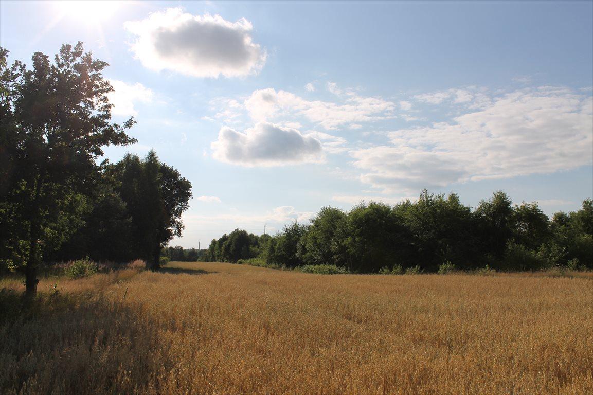 Działka rolna na sprzedaż Łagiewniki Nowe  9500m2 Foto 12