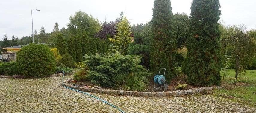 Dom na sprzedaż Borówiec  235m2 Foto 6