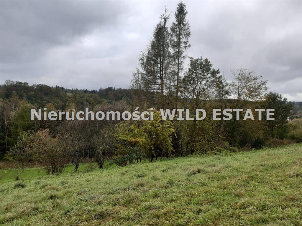 Działka rolna na sprzedaż Olszanica, Olszanica  4017m2 Foto 7