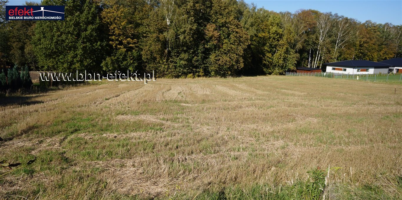 Działka inna na sprzedaż Bielsko-Biała, Stare Bielsko  3000m2 Foto 3