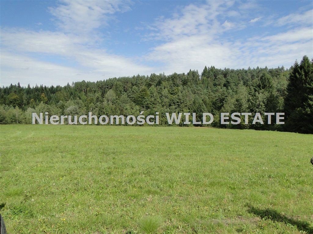 Działka rolna na sprzedaż Solina, Berezka  9400m2 Foto 3