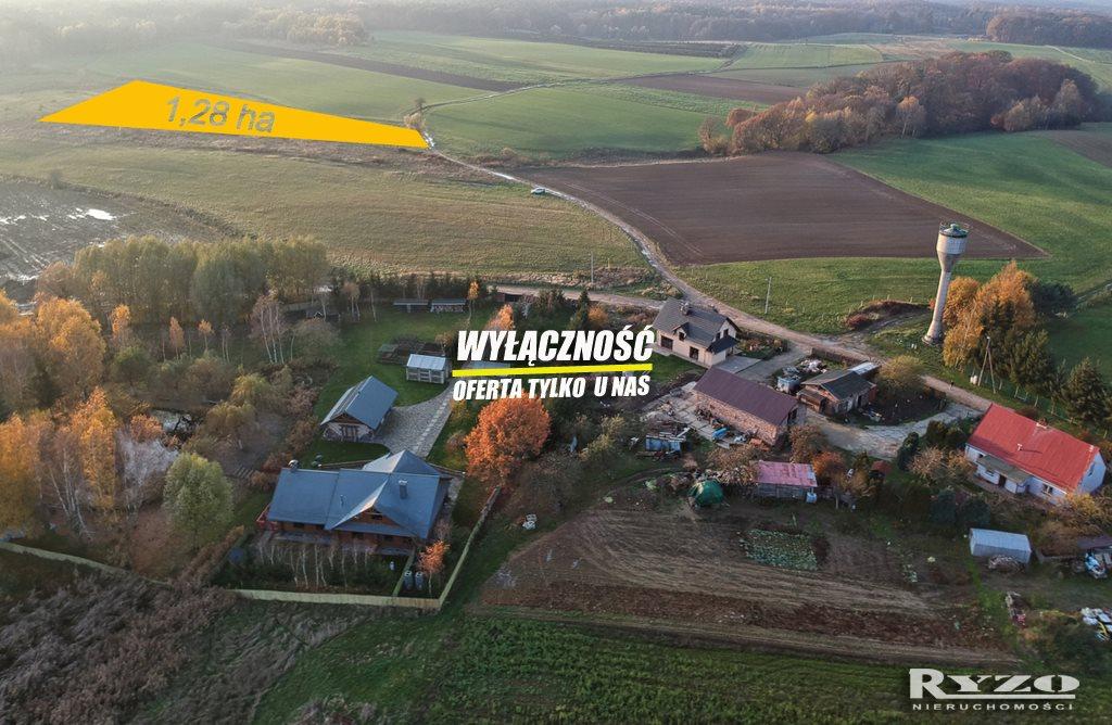Działka rolna na sprzedaż Przęsocin  12800m2 Foto 1