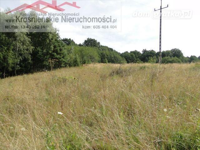 Działka rolna na sprzedaż Odrzykoń  1500m2 Foto 3