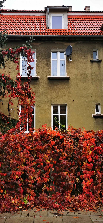 Mieszkanie dwupokojowe na sprzedaż Poznań, Grunwald, Dwupoziomowy lokal do zamieszkania, Jarochowskiego 55  31m2 Foto 2