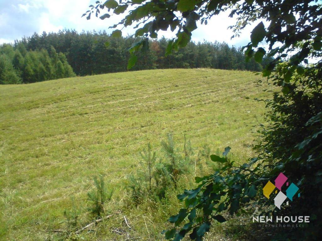 Działka rolna na sprzedaż Pupki  3037m2 Foto 1