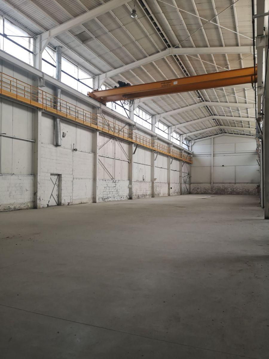 Lokal użytkowy na wynajem Mysłowice  1300m2 Foto 2