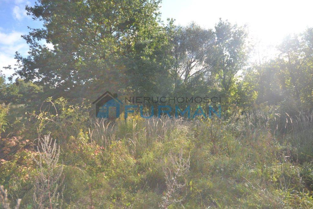 Działka inna na sprzedaż Radosiew  2155m2 Foto 7