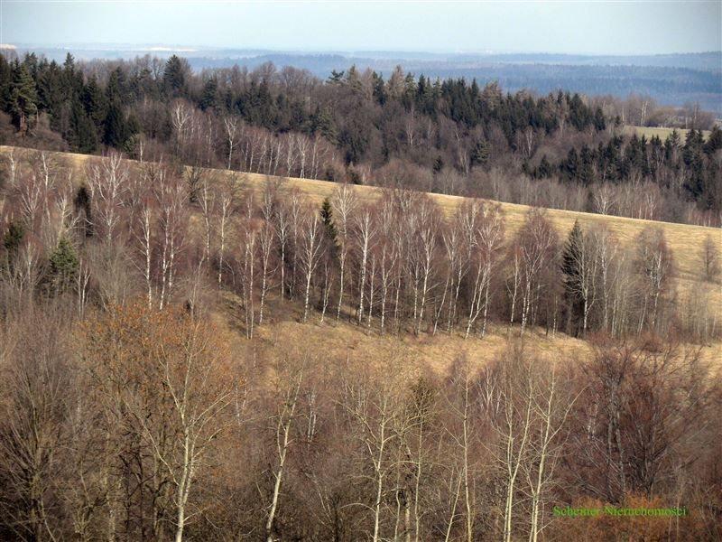 Działka rolna na sprzedaż Lubomierz, Pogórze Izerskie  370000m2 Foto 7